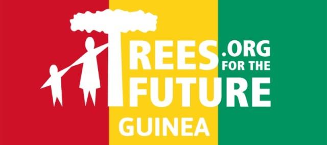 Trees Guinea